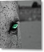The Green Eyed Horse Metal Print