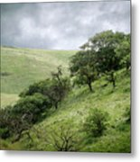 The Green Hills Of Home Metal Print
