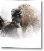 The Guardian II Falling Snow Metal Print