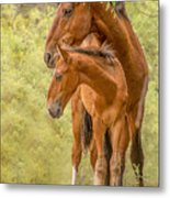 The Guardian Metal Print