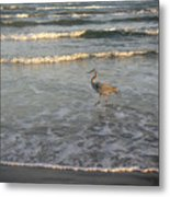 The Gulf At Twilight - Going My Way Metal Print