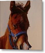 The Halter Metal Print