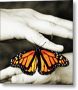 The Hands And The Butterfly Metal Print