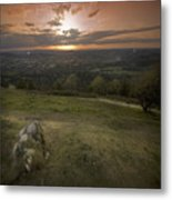 The Herefordshire Metal Print