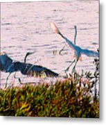 The Heron And The Egret Metal Print