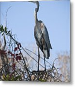 The Heron Perch Metal Print