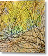 The Hidden Forest Metal Print