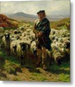 The Highland Shepherd Metal Print by Rosa Bonheur