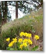 The Hillsides Are Alive Metal Print