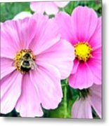 The Honeymaker Metal Print