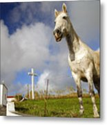 The Horse And The Chapel Metal Print