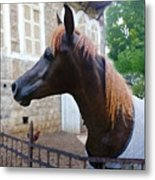The Horse In The City Metal Print