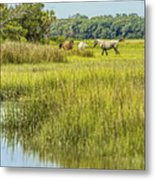 The Horses Of Cumberland Island Metal Print