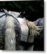 The Horses Of Mackinac Island Michigan 04 Metal Print