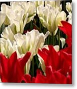 The Image Of A Tulip Metal Print