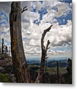 The Journey To Harney Peak Metal Print
