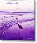 The Joy Of Ocean And Bird 2 Metal Print