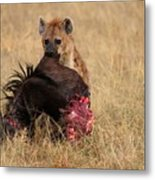 The Kill Metal Print