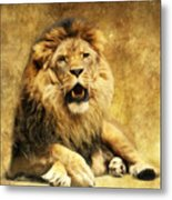 The King Metal Print by Angela Doelling AD DESIGN Photo and PhotoArt