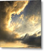 The King Of His Domain Metal Print by Meirion Matthias