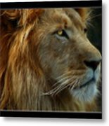 The King Metal Print by Ricky Barnard