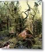 The King's Forest Metal Print