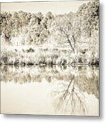 The Lake #47 Metal Print