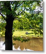 The Lake In The Park Metal Print