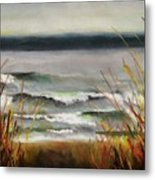 The Lake Shore Metal Print
