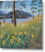 The Lake Trail Metal Print