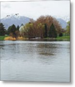 The Lake View  Metal Print