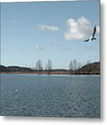 The Landscape Along The Finnish Coast Metal Print