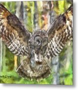 The Largest Owl Metal Print