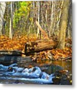 The Last Of The Fall Color Metal Print