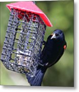 The Last Of The Suet Metal Print