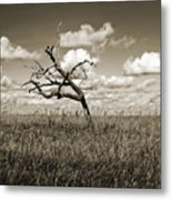 The Last One Standing - Sepia Metal Print
