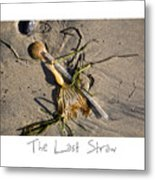 The Last Straw Metal Print by Peter Tellone