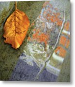 The Leaf And The Reflections Metal Print