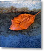 The Leaf On The Stairs Metal Print