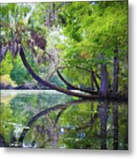 The Leaning Palm Metal Print
