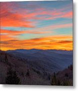The Leaves Are Gone But The Beauty Is There. Metal Print