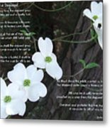 The Legend Of The Dogwood Metal Print