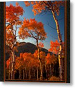 The Light Is Good Metal Print