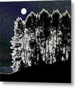 The Light Of The Moon Metal Print