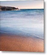The Limpet Metal Print