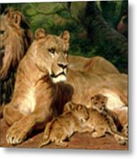 The Lions At Home Metal Print