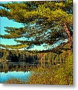 The Little Known Cary Lake Metal Print