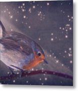 The Little Robin At The Night Metal Print