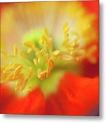 The Little Things Metal Print by Ron Hoggard