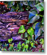 The Log In The Woods  Metal Print